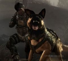 Call of Duty: Ghosts Gameplay Accolades Video